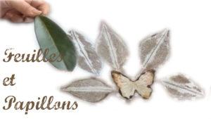 Cours Gratuits Feuilles et papillons